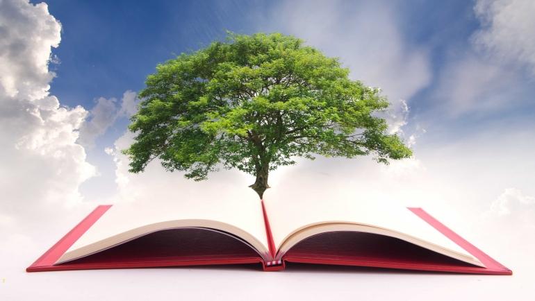 Historia y principios de la Educación Sostenible