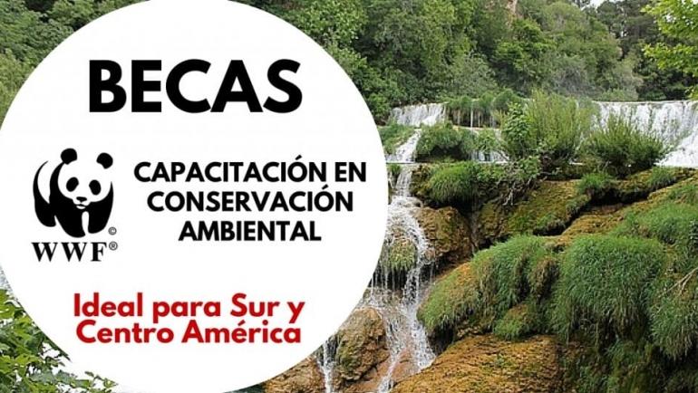 Becas de la WWF en Conservación Ambiental para Latinoamericanos
