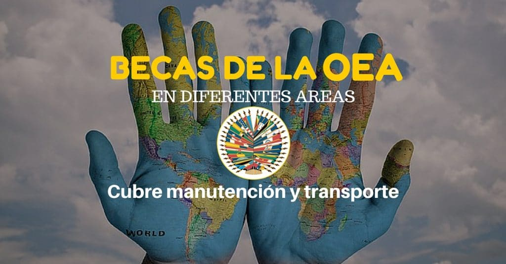 Software de becas de la OEA – incluye matrícula, comestibles, manutención y pasajes.