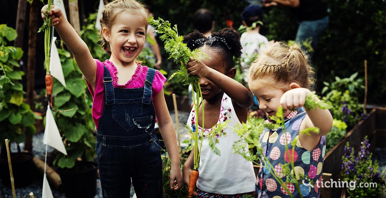 Aprende, crea y diviértete con un Huertishi escolar
