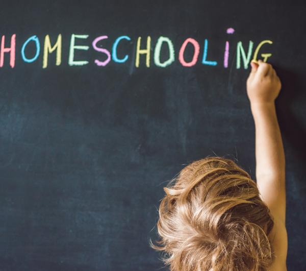 Aprendiendo desde casa: una formación fuera de la escuela