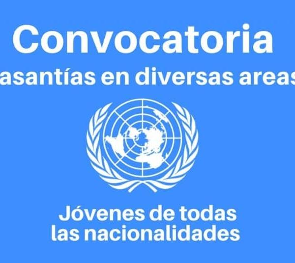 Convocatoria para pasantías con las Naciones Unidas para jóvenes de diferentes profesiones