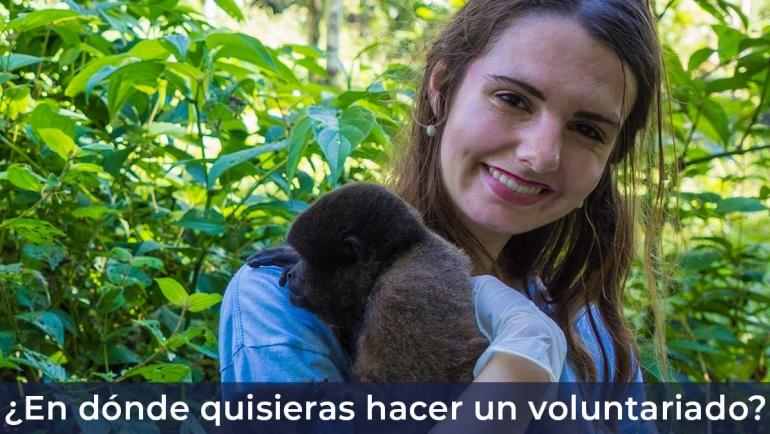 En dónde quisieras hacer tu voluntariado?